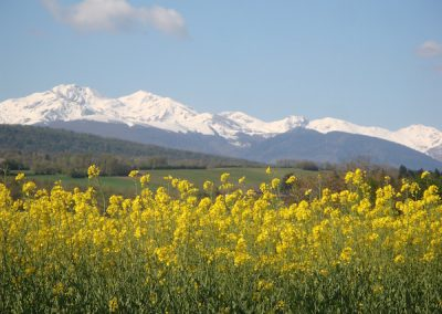 View of the Pyrenees leaving Leran, France