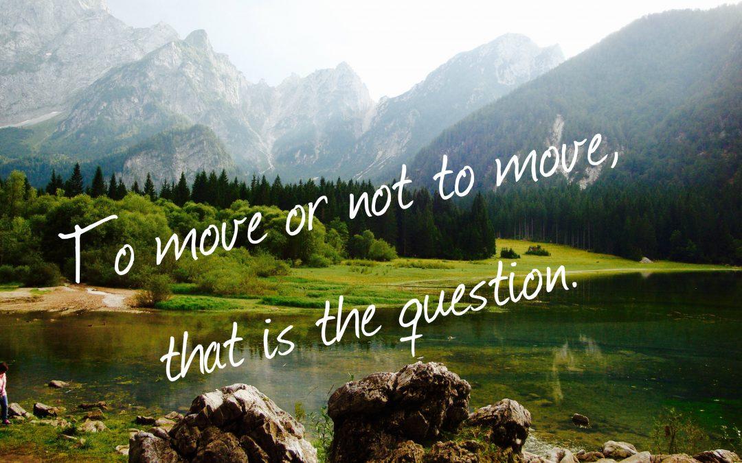 Travel's Paradox – movement or stillness?