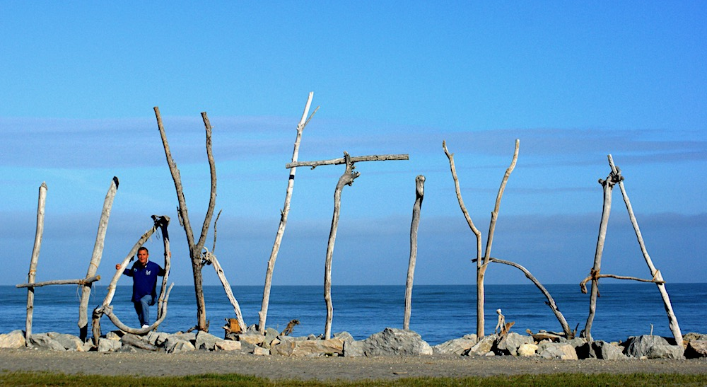 Hokitkia driftwood, New Zealand