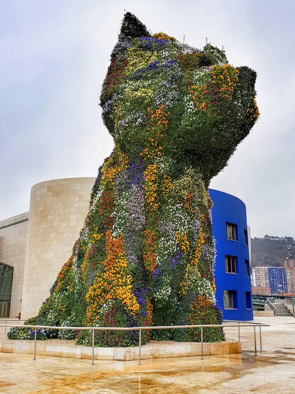 Guggenheim's puppy, Bilbao, Spain