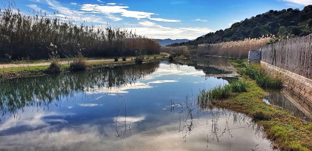 Pego Marshes, Exploring Denia
