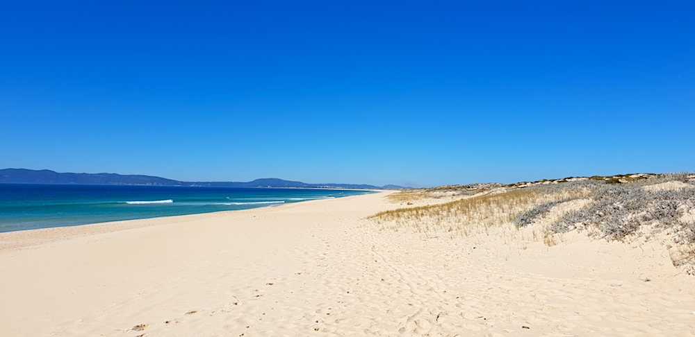 Comporta beach,Portugal