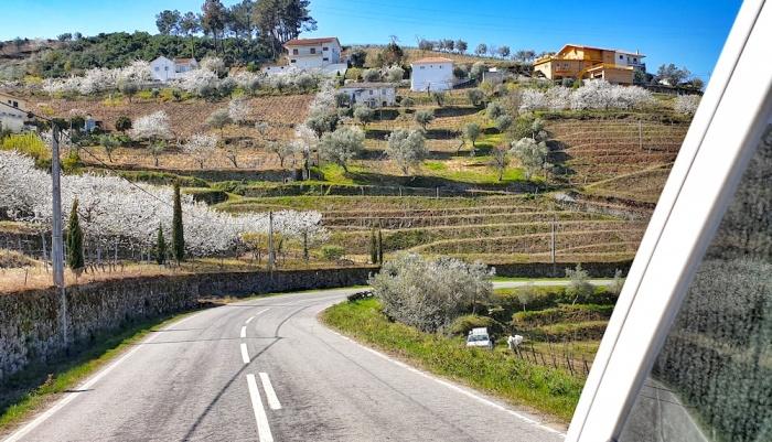 N222 Pinhao vineyards,Portugal