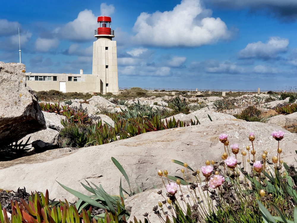Sagres lighthouse and flowers