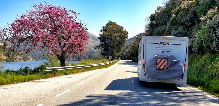 Scoobie Route N222, Duoro valley, Portugal