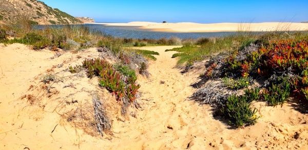 Wild west beach and dunes Carrapateira,Portugal