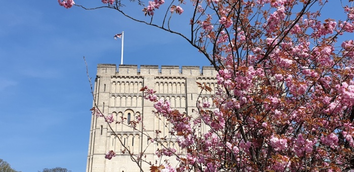 Norwich castle in spring,Norfolk, UK