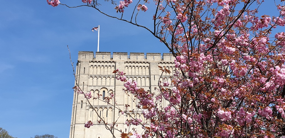 Norwich castle in spring