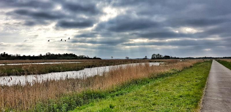 Giethoorn wetlands, The Netherlands