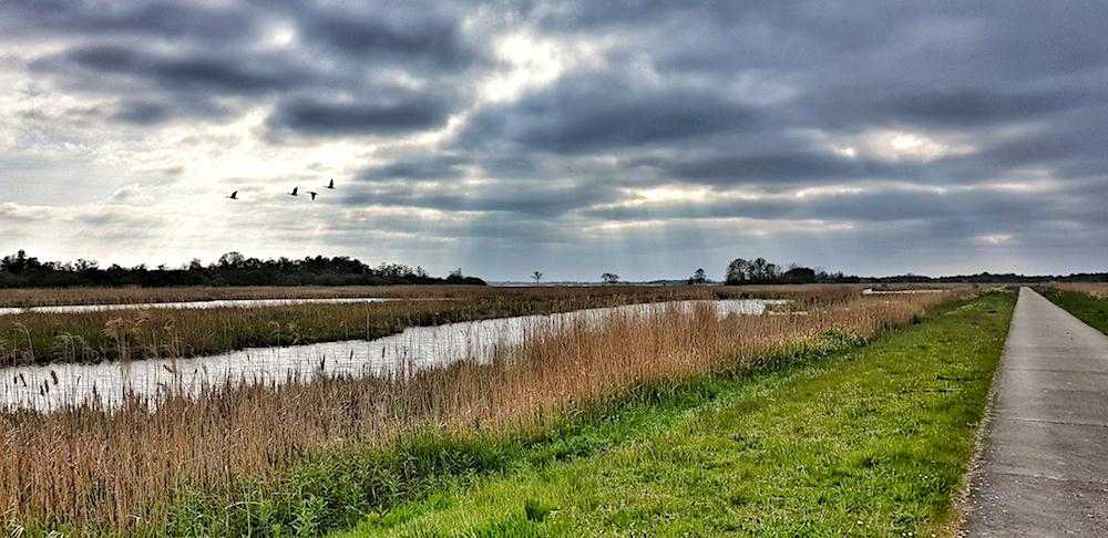 Giethoorn wetlands