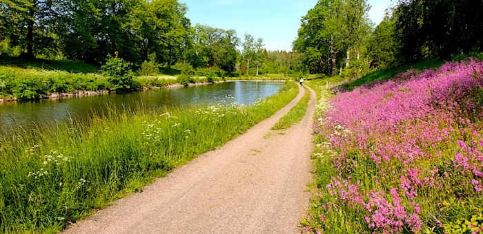 Gota canal,tow path and flowers, Sweden