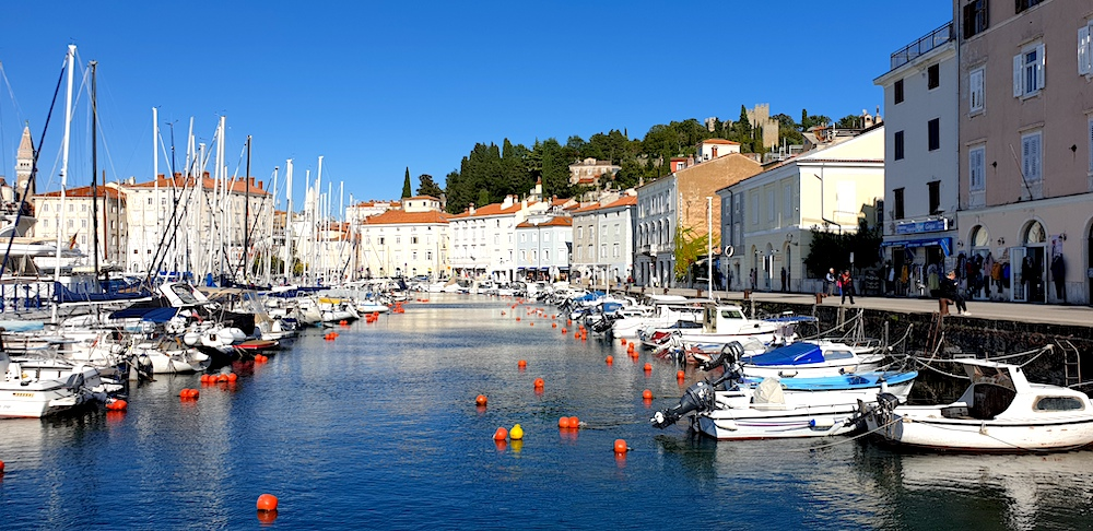Piran harbour and old town